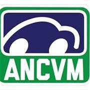 Asociasión Nacional Mexicana de Clubes Volkswagen