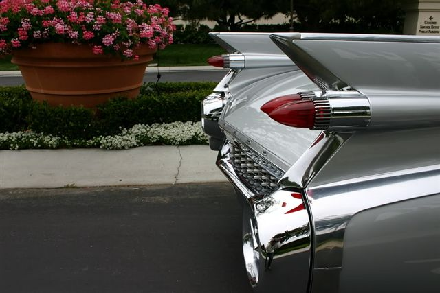 BIG CARS¡