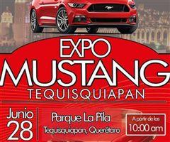 Más información de Expo Mustang Tequisquiapan