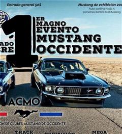 Más información de 1er Magno Evento Mustang Occidente