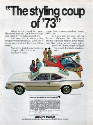 Rambler | 1973 AMC Hornet